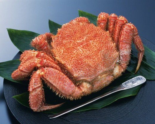 Stock Photo: 4029R-321234 Hair crab with fork on plate, high angle view