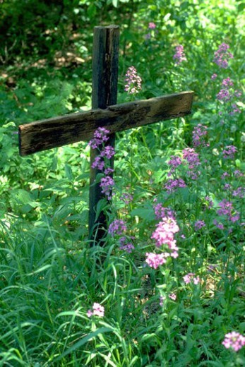 Rugged cross surrounded by wild flowers : Stock Photo