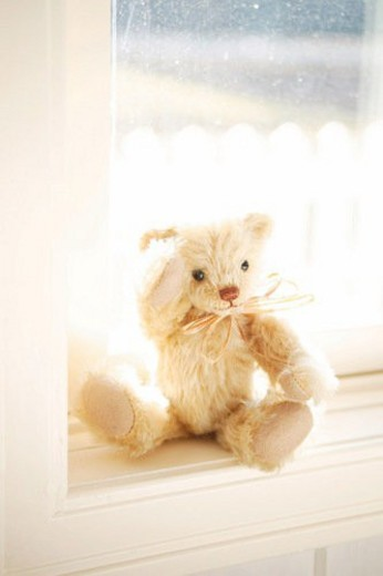 Stock Photo: 4029R-327871 Teddy Bear