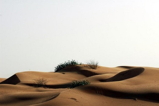 Stock Photo: 4029R-328151 desert, sand, dune