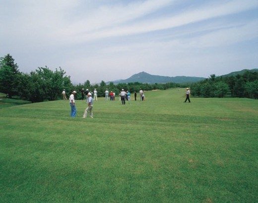 outdoors, golf, scenic, scenery, landscape, golf course, sports : Stock Photo