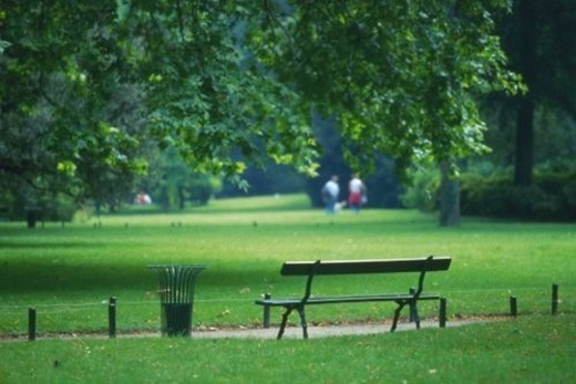Image of a Huge Park. With People Taking a Walk in the Background, Differential Focus, Rear View, Paris, France : Stock Photo