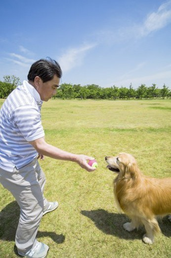 The Senior Man Who Plays With A Dog : Stock Photo