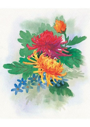 watercolor, plant, flower : Stock Photo