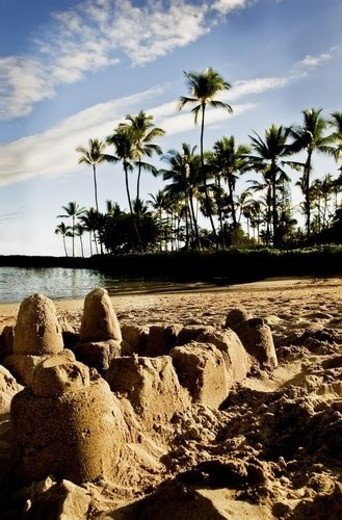 Stock Photo: 4029R-344789 Sand castles on a tropical beach