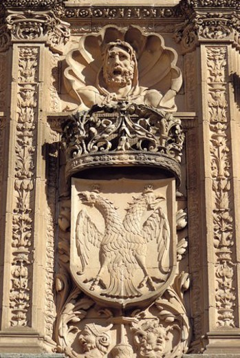 Spain, Castilla Leon, Salamanca, Sculpt, Sculpted, Coat of arms, Heraldry : Stock Photo