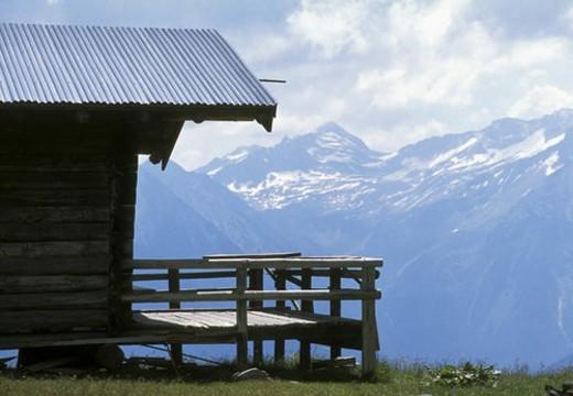 calf, alpe, cabin, bath, austria, calm, alp : Stock Photo