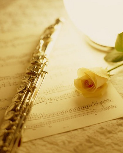Stock Photo: 4029R-36562 A Score, A Flute, And A Rose
