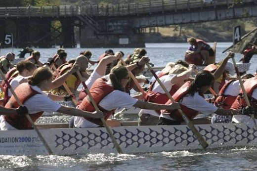 Stock Photo: 4029R-366808 dragon boat racing in Vancouver British Columbia. There are up to 22 people in a boat. Dragon boat racing is largely used as a team building activitey for companies. As well, dragon boat races usually