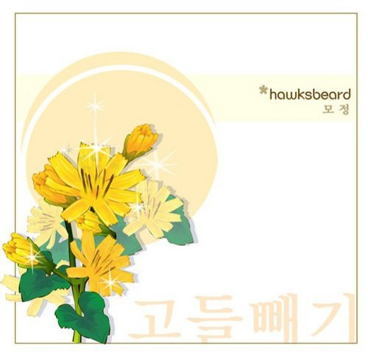 Stock Photo: 4029R-374625 korean characters, nature, hawksbeard, templet, plant, hangeul, flower