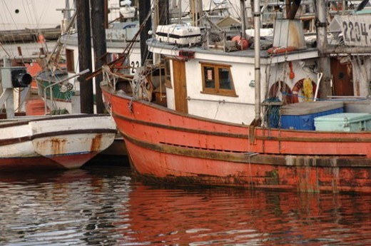 Boats in Ucluelet Harbour, Vancouver Island, Canada : Stock Photo