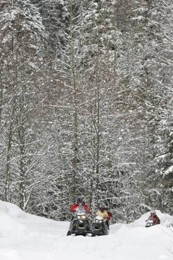 Stock Photo: 4029R-386055 snowmobile adventure tour in Whistler British Columbia