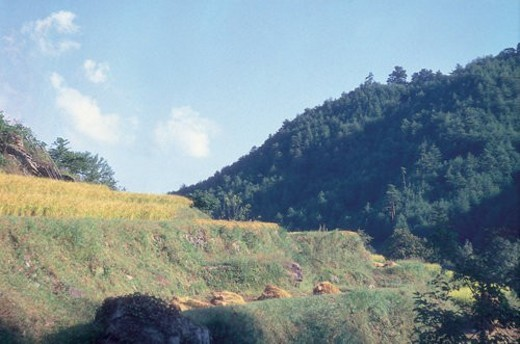 Stock Photo: 4029R-389426 scenery, hill, mountain, landscape, slope