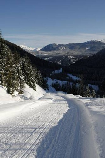 Stock Photo: 4029R-389829 winter mountain scenery in Whistler BC