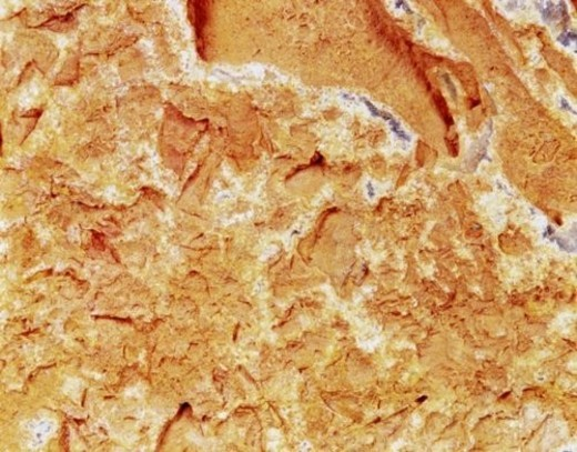 Photography of roscoelite, Stone material, Close Up : Stock Photo