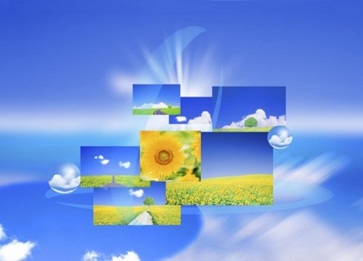 Stock Photo: 4029R-395051 Collage of sunflowers