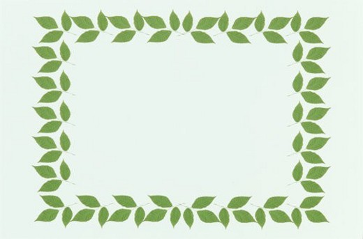 The Frame Of Green Leaves : Stock Photo