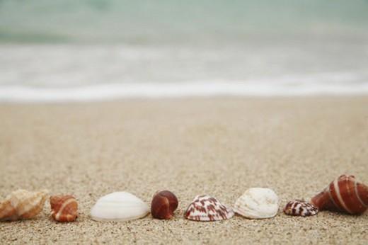 blasen, allemagne, array, banks, bavaria, beach : Stock Photo