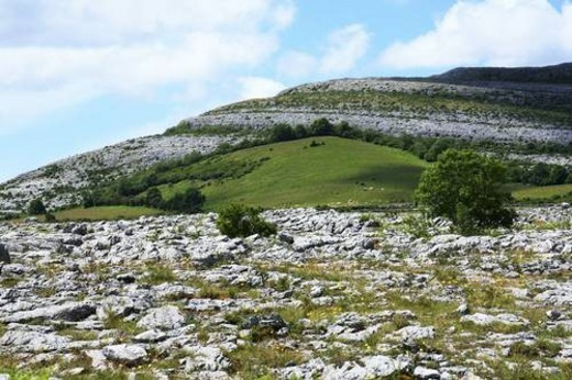 Stock Photo: 4029R-406523 Rock Garden, The Burren, Co Clare, Ireland; View of rock landscape