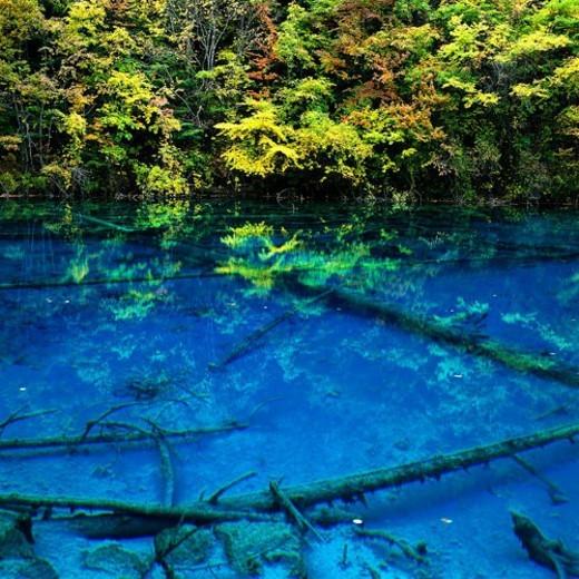 Rainbow Sea, Nine-village Valley, Sichuan : Stock Photo