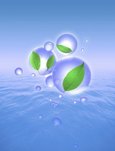 View of leaves in the bubbles (digital composite) : Stock Photo