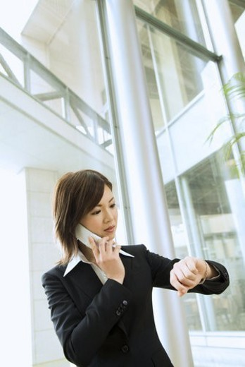 The Business Woman Who Telephones : Stock Photo