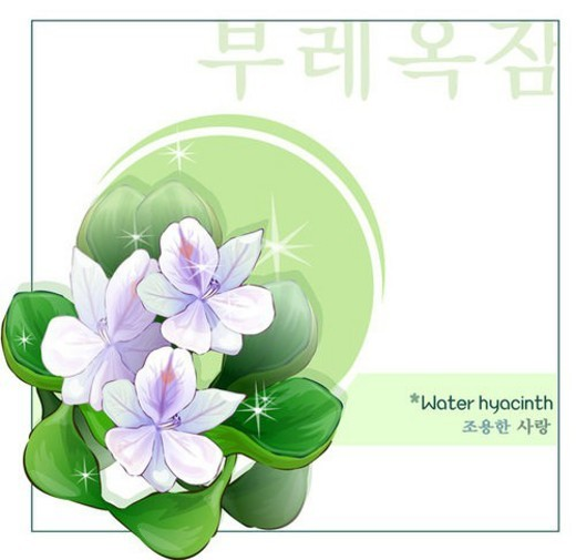 hangeul, nature, korean characters, templet, plant, korean alphabet, flower : Stock Photo