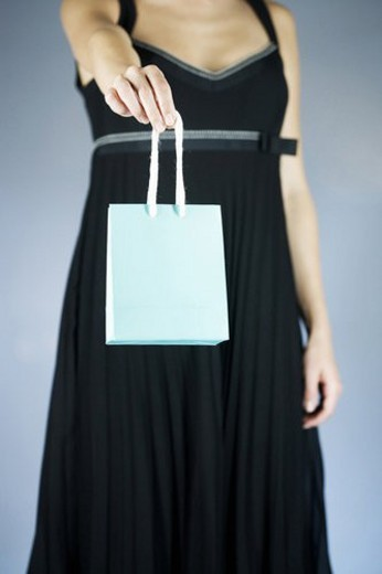 A young woman holding an expensive shopping bag : Stock Photo
