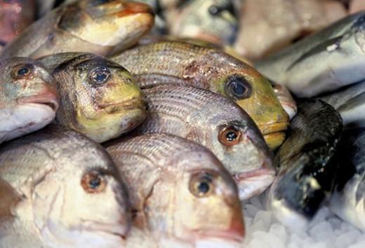 Stock Photo: 4029R-41756 standeln, naschmarkt, wienzeile, austria, calf, fish, fish-market