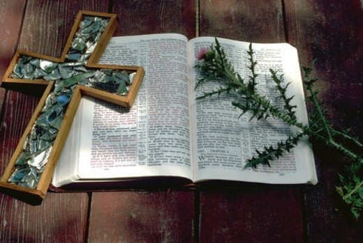 Stock Photo: 4029R-428144 Thistle Bible and Cross