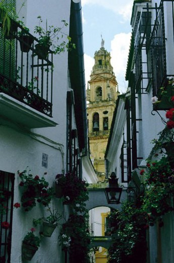 Stock Photo: 4029R-4318 Spain, Andalucia, Andalusia, Cordoba, Street, Building, Buildings