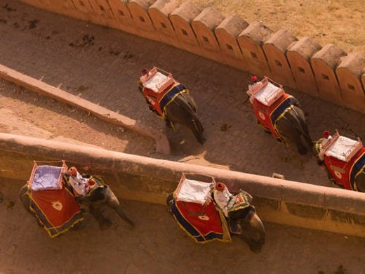 Stock Photo: 4029R-435010 People riding elephants in Amber Fort, Jaipur, India