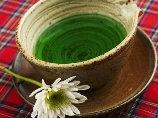 tea-things, tea cup, mum, chrysanthemum, saucer, flower : Stock Photo