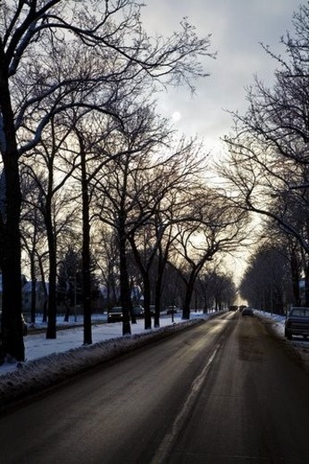 Stock Photo: 4029R-439394 A city road in winter