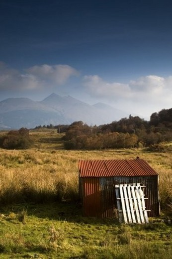 Shack in a field : Stock Photo