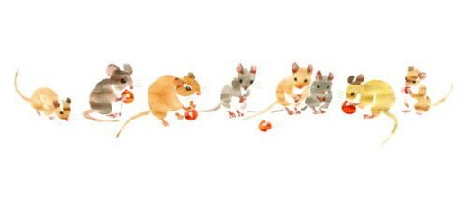 Stock Photo: 4029R-442914 Illustration of mice eating cherries, white background