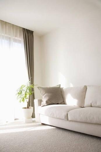 Sofa in living room : Stock Photo
