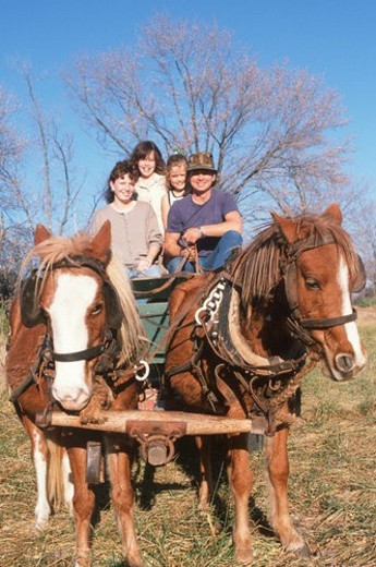 A family taking a ride on horses and wagon : Stock Photo