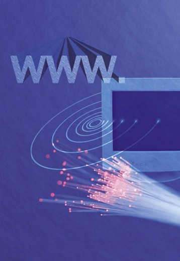 Computer monitor and bunch of fiber optics with image of web address, CG, composition : Stock Photo