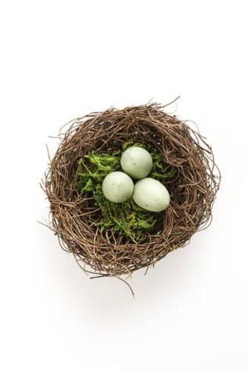 Stock Photo: 4029R-4889 Studio still life of bird s nest with three speckled eggs.