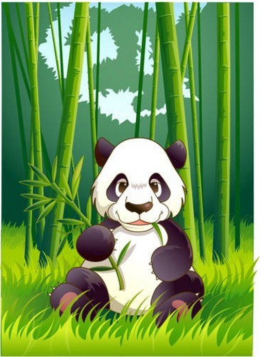 Stock Photo: 4029R-49626 vertebrate, panda, animal, bamboo, mammalia, mammal, zoo