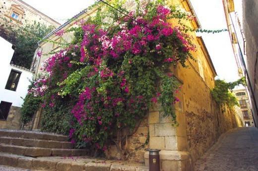 Caceres, Extremadura, Spain, City, Town, Architecture, Corner : Stock Photo