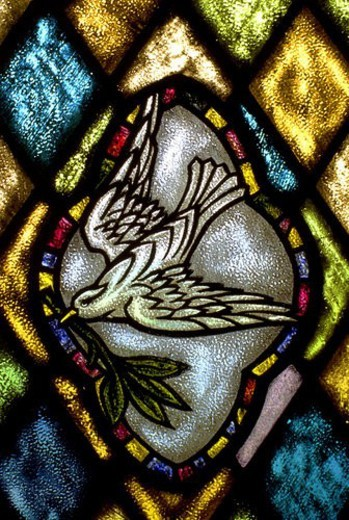 Stock Photo: 4029R-71317 Stained glass window of dove carrying an olive branch
