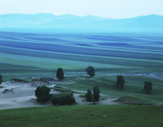 Stock Photo: 4029R-7501 Overview of bushes and distant mountain range, Bashang Grassland, Nei Mongol