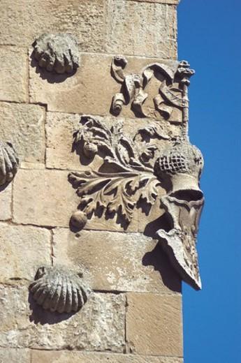 Stock Photo: 4029R-85654 Spain, Castilla Leon, Salamanca, Architecture detail, Architecture details, Library, Casa de las conchas