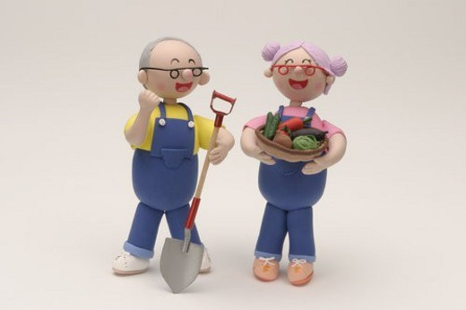 Senior Husband And Wife Who Harvest Vegetables : Stock Photo