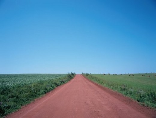 Dirt Road : Stock Photo