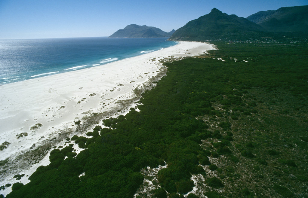 Beach near Cape Town, South Africa : Stock Photo