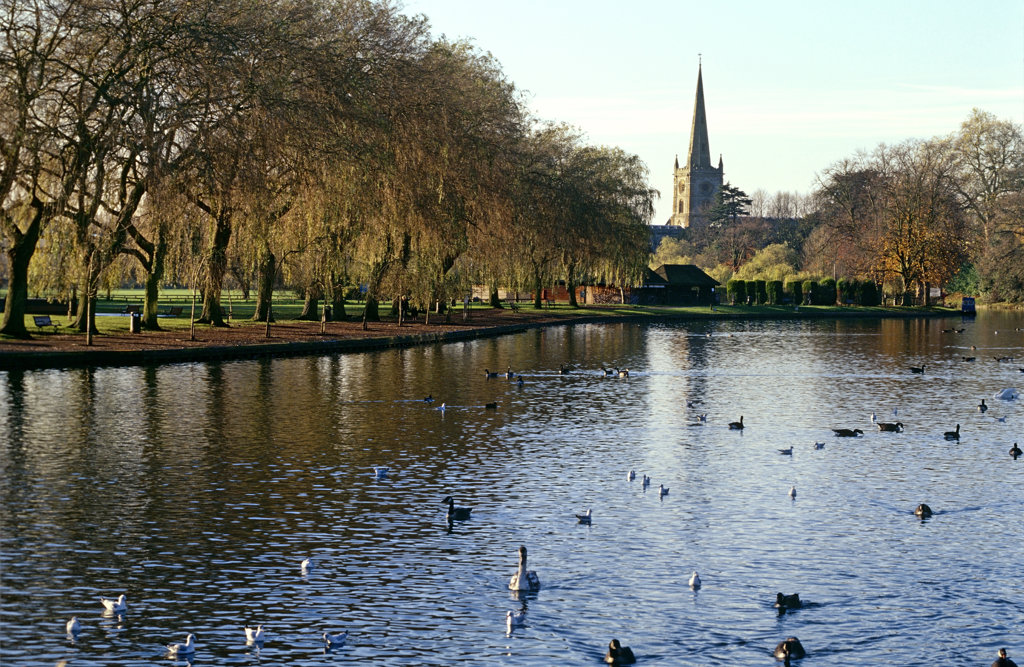 River Avon and Church, Stratford-upon-Avon, England, United Kingdom : Stock Photo