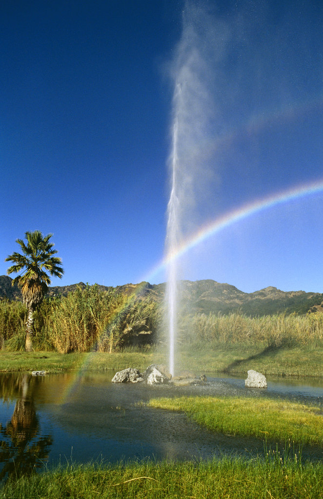 Old Faithful Geyser, Napa Valley, California, North America : Stock Photo